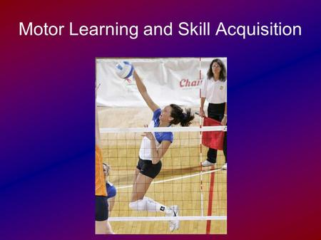 Motor Learning and Skill Acquisition. Divisions of Motor Activity Motor activity can be divided into two divisions:  Automatic motor activity  Controlled.