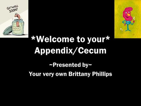 *Welcome to your* Appendix/Cecum ~Presented by~ Your very own Brittany Phillips.