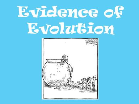 Evidence of Evolution. As scientists we must review all of the evidence before confirming a theory There is a tremendous amount of evidence to support.