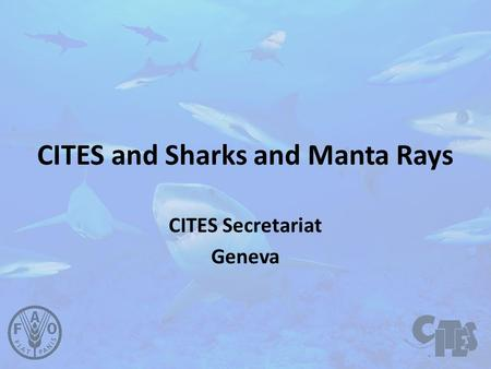 CITES and Sharks and Manta Rays CITES Secretariat Geneva.