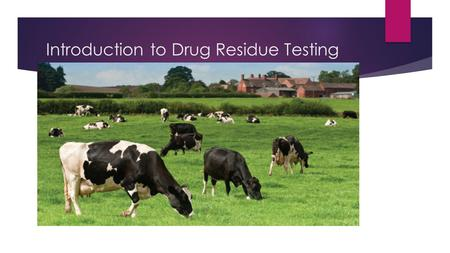 Introduction to Drug Residue Testing.  Introduction  Basic Lab Set Up  Sampling  Testing Demonstrations  Record Keeping  Proficiency Testing (Split.