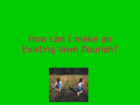 How can I make an Existing lawn flourish?. How I want my lawn I want a beautiful lawn with no weeds and a brighter healthier green. Right now there is.