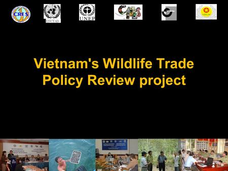 Vietnam's Wildlife Trade Policy Review project. Vietnam's WLT Policy Review project The wildlife trade policy review was undertaken within 2007-2008 with.