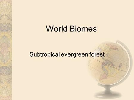 World Biomes Subtropical evergreen forest. Introduction In the middle latitudes, the prevailing winds carry moisture-laden air masses over the west coasts.