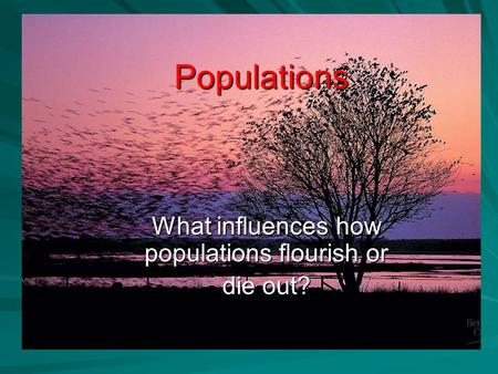 Populations What influences how populations flourish or die out?