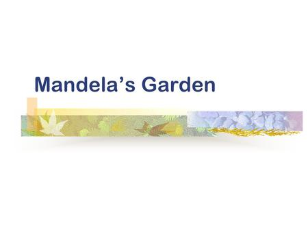 Mandela's Garden Background Information Warming-up questions Text appreciation Structure analysis In-class discussion Language understanding Topics for.