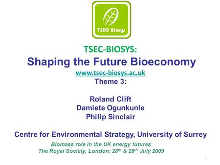 1 TSEC-BIOSYS: Shaping the Future Bioeconomy www.tsec-biosys.ac.uk Theme 3: Roland Clift Damiete Ogunkunle Philip Sinclair Centre for Environmental Strategy,
