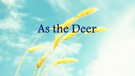 As the Deer. As the deer panteth for the water So my soul longeth after You You alone are my heart's desire And I long to worship You As the Deer: Verse.