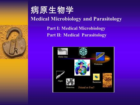 parasitology part 1 Microbiology contains following sub-disciplines which includes virology, mycology, parasitology, and bacteriology  free nbde part 1 questions with rationale.