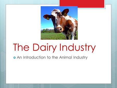 The Dairy Industry An Introduction to the Animal Industry.