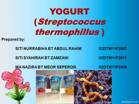 Yogurt is one of the fermented dairy product The word yogurt comes from a Turkish word meaning to curdle or to thicken. Can be made from cow milk, goat.
