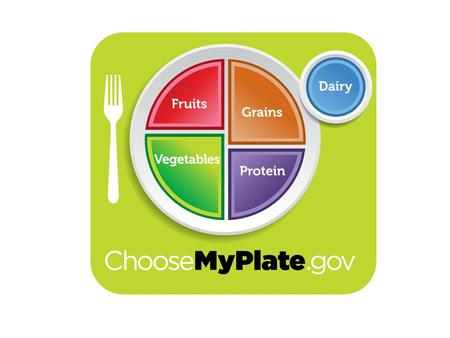 History of the USDA Food Guides New Food Guide Goals Balancing Calories – Enjoy your food, but eat less. – Avoid oversized portions. Foods to Increase.
