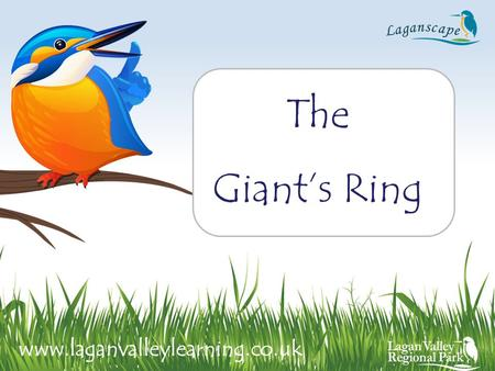 The Giant's Ring www.laganvalleylearning.co.uk. Circular enclosure 180 meters in diameter. In the middle of the enclosure stands the remains of a stone.