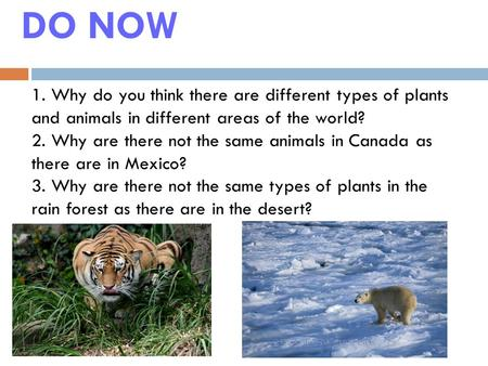DO NOW 1. Why do you think there are different types of plants and animals in different areas of the world? 2. Why are there not the same animals in Canada.