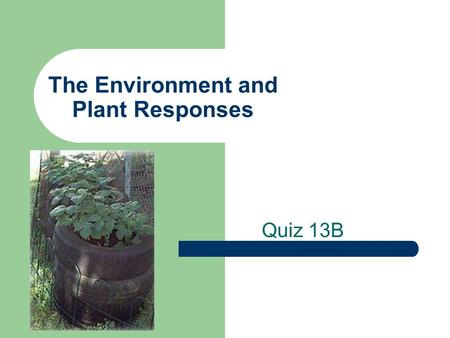 The Environment and Plant Responses