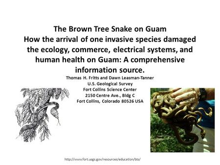 The Brown Tree Snake on Guam How the arrival of one invasive species damaged the ecology, commerce, electrical systems, and human health on Guam: A comprehensive.