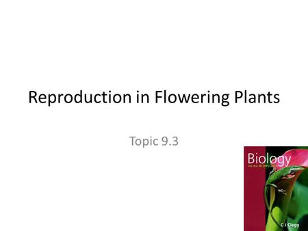 Reproduction in Flowering Plants Topic 9.3. Why flowers? They smell good They are colorful They produce tasty nectar They attract pollinators.