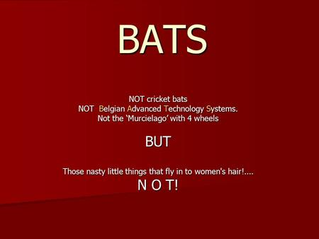 BATS NOT cricket bats NOT Belgian Advanced Technology Systems. Not the 'Murcielago' with 4 wheels BUT Those nasty little things that fly in to women's.