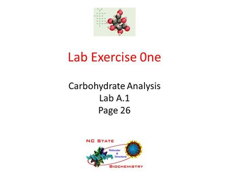 Carbohydrate Analysis Lab A.1 Page 26