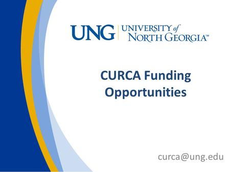 CURCA Funding Opportunities CURCA Supports UR and Creative initiatives across all campuses Workshops & information CURCA Ambassadors CURCA.