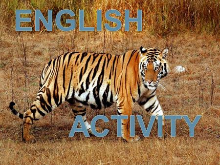ENGLISH ACTIVITY Save Tigers.