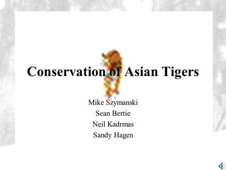 Conservation of Asian Tigers