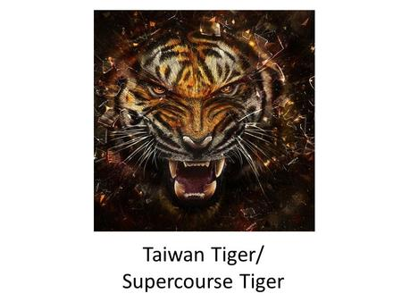 Taiwan Tiger/ Supercourse Tiger. 2012 Taiwan Health Forum Department of Health Executive Yuan (Taiwan) Ministry of Foreign Affairs, R.O.C. (Taiwan) Public.