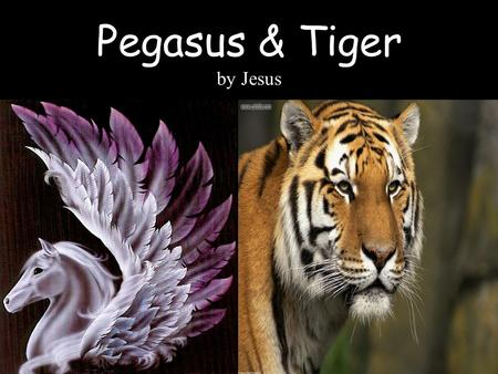 Pegasus & Tiger by Jesus. While Pegasus was born in Greek Mythology, Tiger is a real animal that everyone knows is real.