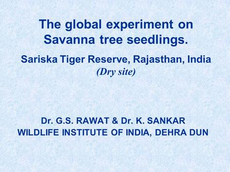 Dr. G.S. RAWAT & Dr. K. SANKAR WILDLIFE INSTITUTE OF <strong>INDIA</strong>, DEHRA DUN The global experiment on Savanna tree seedlings. Sariska Tiger Reserve, Rajasthan,
