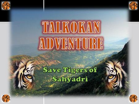 OBJECTIVE Sahyadri Tiger Reserve will include 317.67 sq km of Chandoli National Park and 423.55sq km of Koyna Wildlife Sanctuary. The Chandoli National.