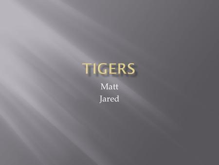 Matt Jared. What is a tiger?Page 1 What does a tiger eat? Page 2 Where do tigers live?Page 3 IndexPage 4 GlossaryPage 5.