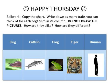 HAPPY THURSDAY Bellwork: Copy the chart. Write down as many traits you can think of for each organism in its column. DO NOT DRAW THE PICTURES. How are.