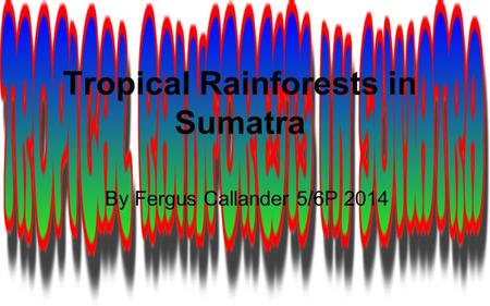 Tropical Rainforests in Sumatra By Fergus Callander 5/6P 2014.