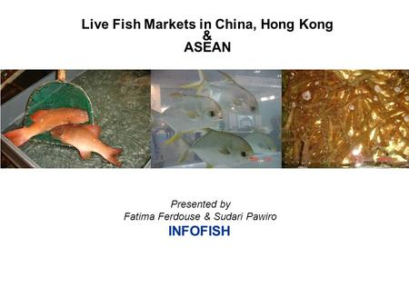Presented by Fatima Ferdouse & Sudari Pawiro INFOFISH Live Fish Markets in China, Hong Kong & ASEAN.