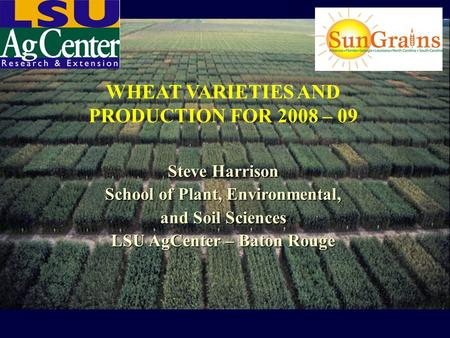 WHEAT VARIETIES AND PRODUCTION FOR 2008 – 09 Steve Harrison School of Plant, Environmental, and Soil Sciences LSU AgCenter – Baton Rouge.