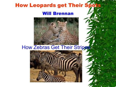 How Leopards get Their Spots Will Brennan How Zebras Get Their Stripes.