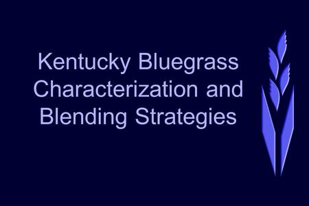 Kentucky Bluegrass Characterization and Blending Strategies.