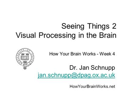 Seeing Things 2 Visual Processing in the Brain How Your Brain Works - Week 4 Dr. Jan Schnupp HowYourBrainWorks.net.