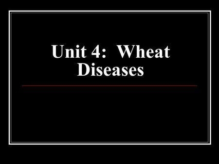 Unit 4: Wheat Diseases. Rusts Three forms can affect wheat (all fungal forms) Stem rust Leaf rust Stripe rust Stem Rust Most destructive wheat disease.