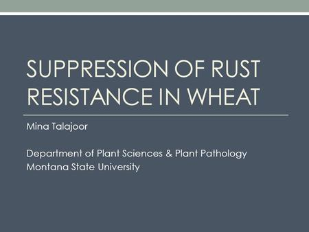 SUPPRESSION OF RUST RESISTANCE IN WHEAT Mina Talajoor Department of Plant Sciences & Plant Pathology Montana State University.