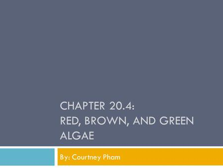 CHAPTER 20.4: RED, BROWN, AND GREEN ALGAE By: Courtney Pham.