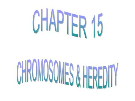 CHROMOSOMES & HEREDITY