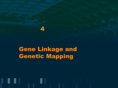 4 Gene Linkage and Genetic Mapping. Mendel's Laws: Chromosomes Homologous pairs of chromosomes: contain genes whose information is often non- identical.