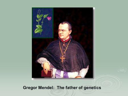 Gregor Mendel: The father of genetics. Mendel's Inferences  The basic units of genetics are material elements (lengths of DNA)  These elements come.