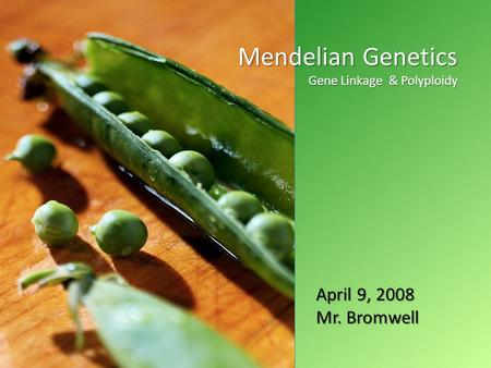 April 2008 Mendelian Genetics Gene Linkage & Polyploidy April 9, 2008 Mr. Bromwell.