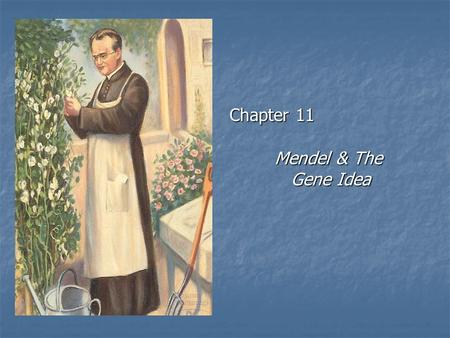 Chapter 11 Mendel & The Gene Idea. Mendelian genetics Character Character heritable feature, i.e., fur color heritable feature, i.e., fur color Trait.