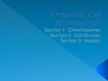 Chapter 8: Cell Reproduction