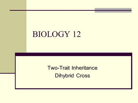 BIOLOGY 12 Two-Trait Inheritance Dihybrid Cross. Remember Mendel's Peas… CharacterTraitAllele Seed shapeRoundR Wrinkledr Seed colourYellowY Greeny.
