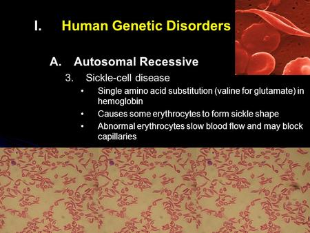 I. I.Human Genetic Disorders A. A.Autosomal Recessive 3. 3.Sickle-cell disease Single amino acid substitution (valine for glutamate) in hemoglobin Causes.