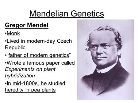 "Mendelian Genetics Gregor Mendel Monk Lived in modern-day Czech Republic ""father of modern genetics"" Wrote a famous paper called Experiments on plant hybridization."